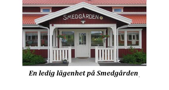 Banner_Smedgarden